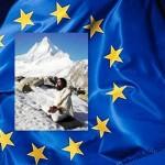Sunyogi Europe